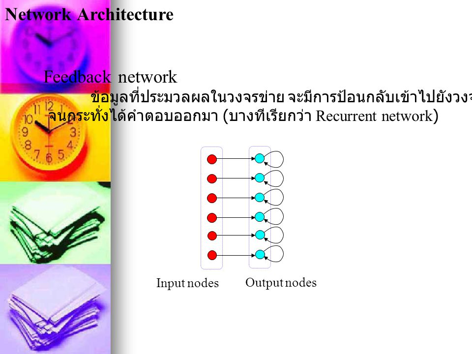 Network Architecture Feedback network