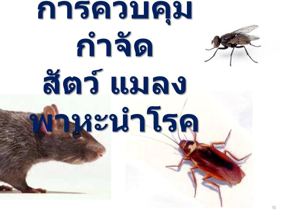 การควบคุม กำจัด สัตว์ แมลงพาหะนำโรค