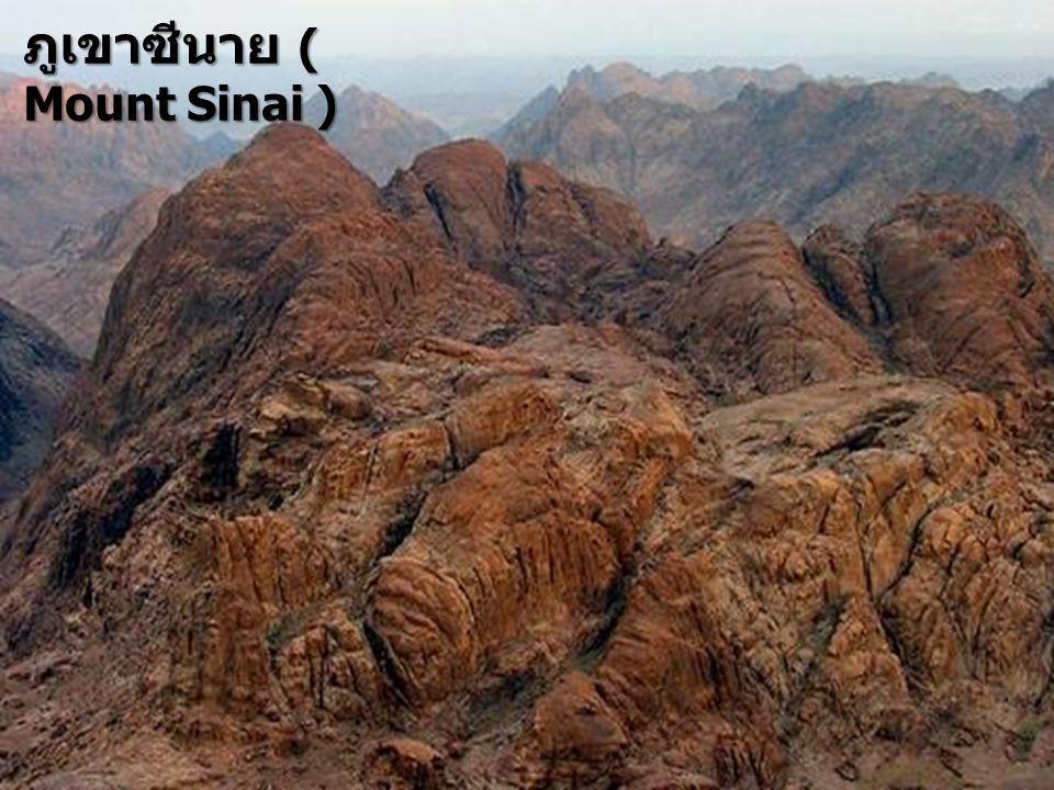 ภูเขาซีนาย ( Mount Sinai )