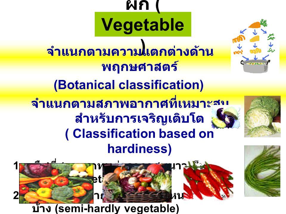 จำแนกตามความแตกต่างด้านพฤกษศาสตร์ (Botanical classification)
