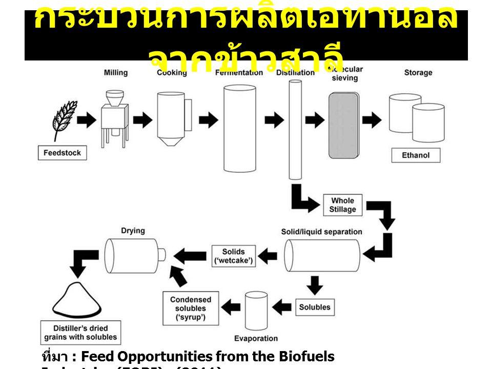 กระบวนการผลิตเอทานอลจากข้าวสาลี