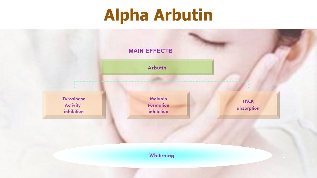 Alpha Arbutin Main effects Arbutin Whitening Tyrosinase Activity