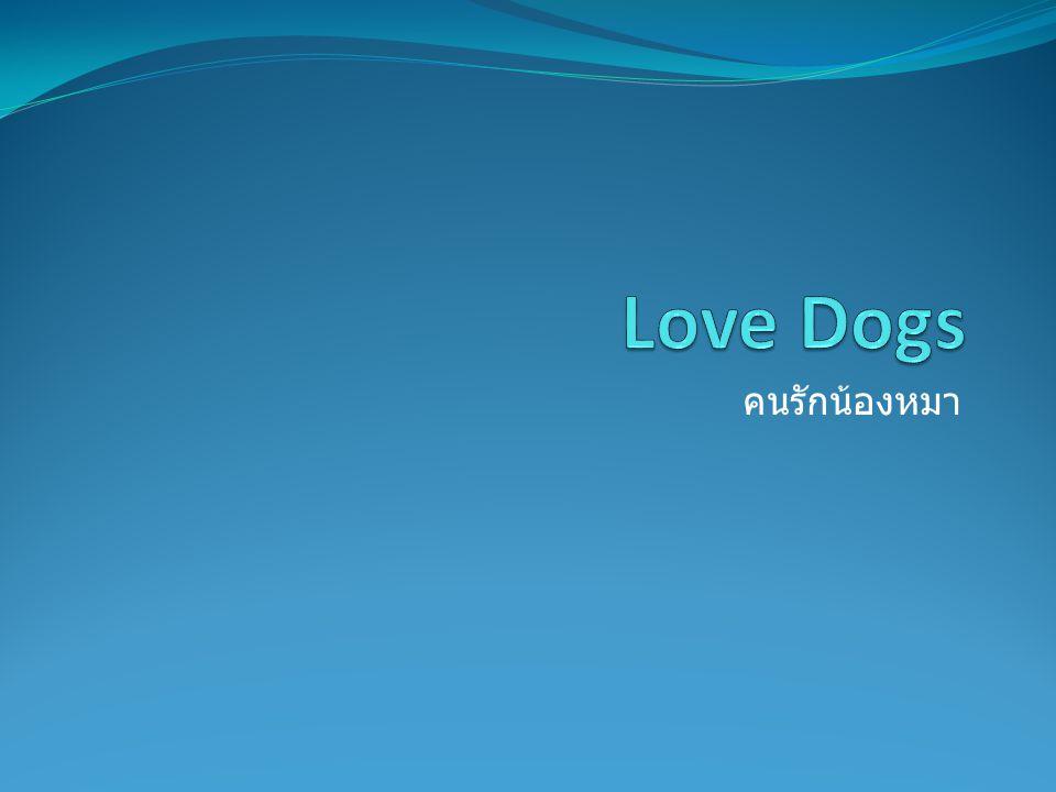 Love Dogs คนรักน้องหมา