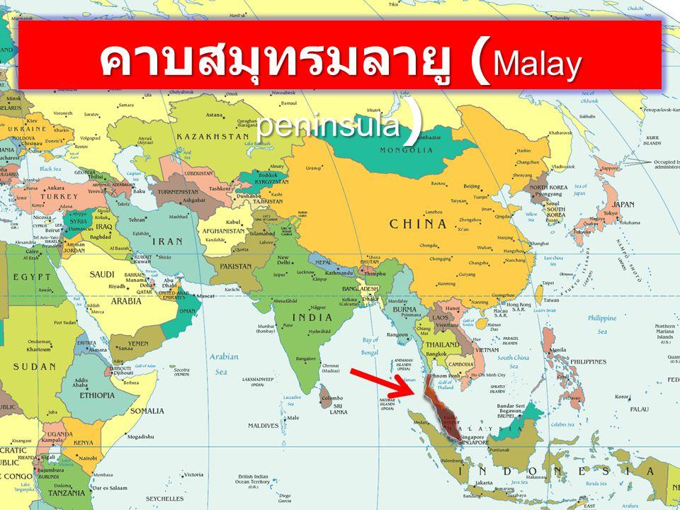 คาบสมุทรมลายู (Malay peninsula)