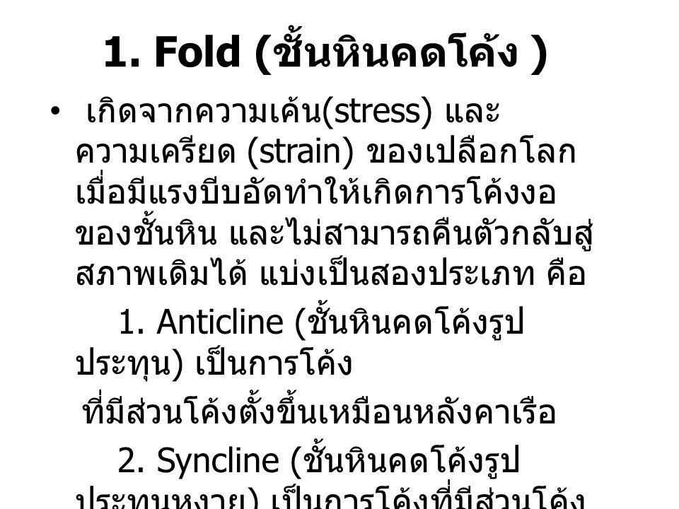 1. Fold (ชั้นหินคดโค้ง )