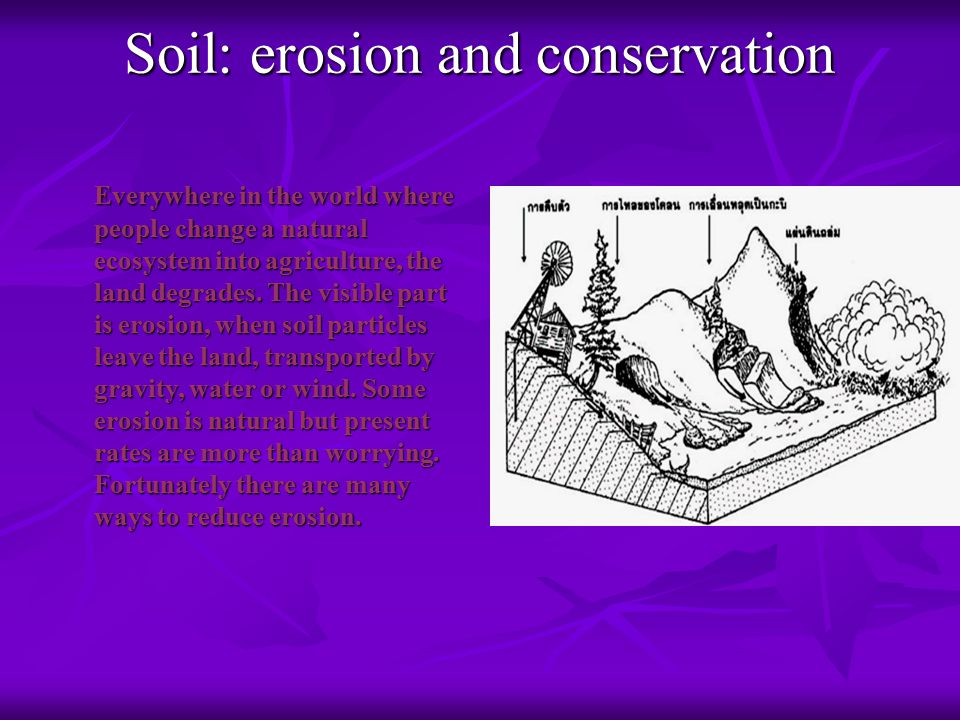 Soil: erosion and conservation