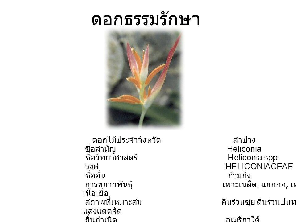 ดอกธรรมรักษา