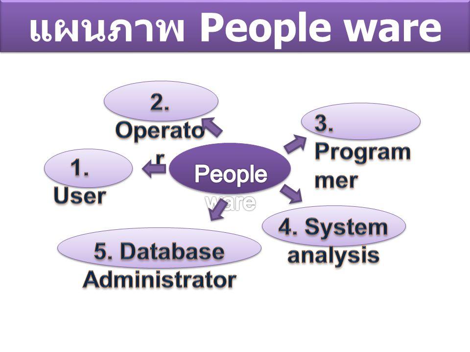 5. Database Administrator