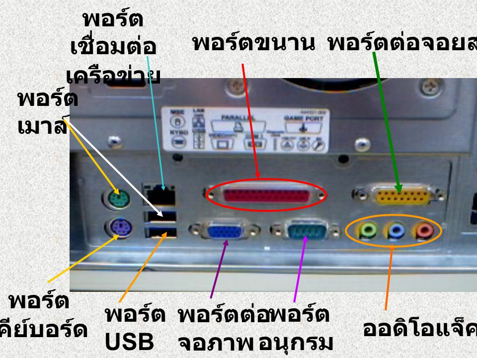 พอร์ตเชื่อมต่อ เครือข่าย. พอร์ตขนาน. พอร์ตต่อจอยสติก. พอร์ต. เมาส์ พอร์ต. คีย์บอร์ด. พอร์ต. USB.