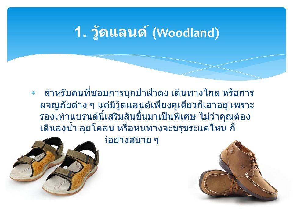 1. วู้ดแลนด์ (Woodland)