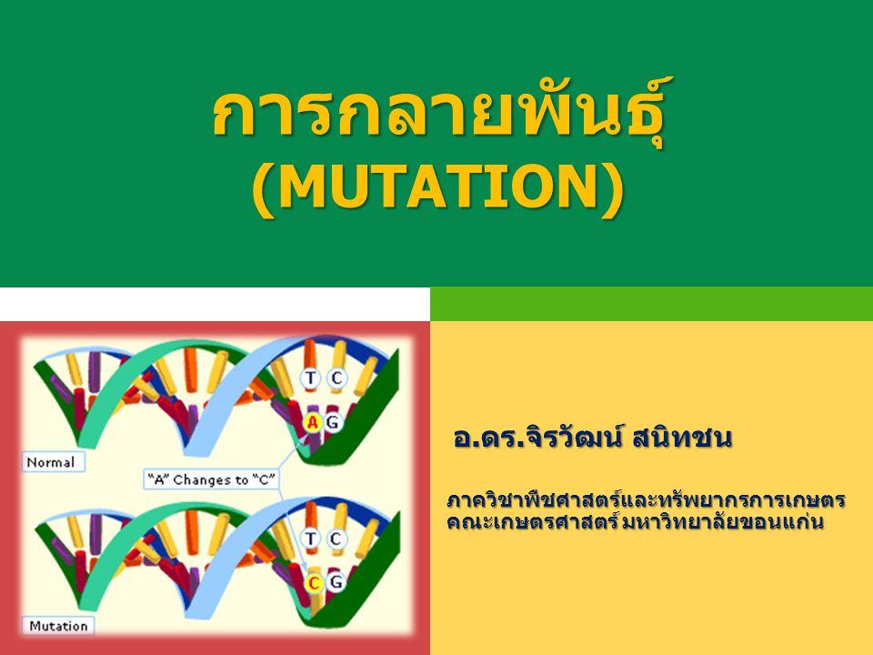 การกลายพันธุ์ (MUTATION)