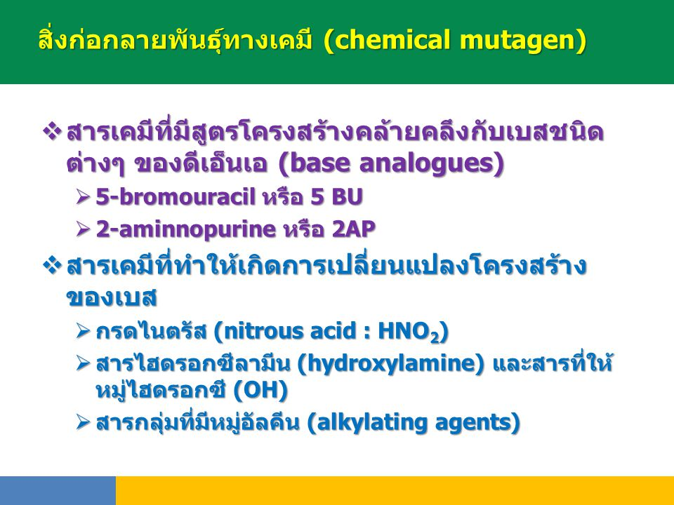 สิ่งก่อกลายพันธุ์ทางเคมี (chemical mutagen)