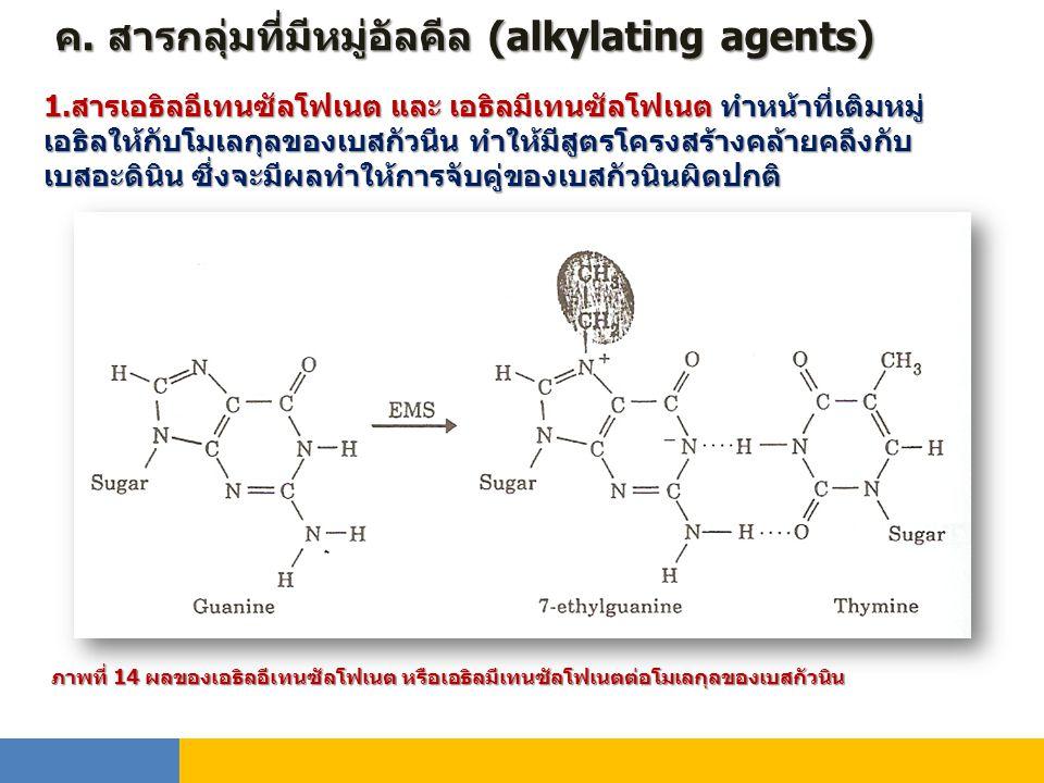 ค. สารกลุ่มที่มีหมู่อัลคีล (alkylating agents)