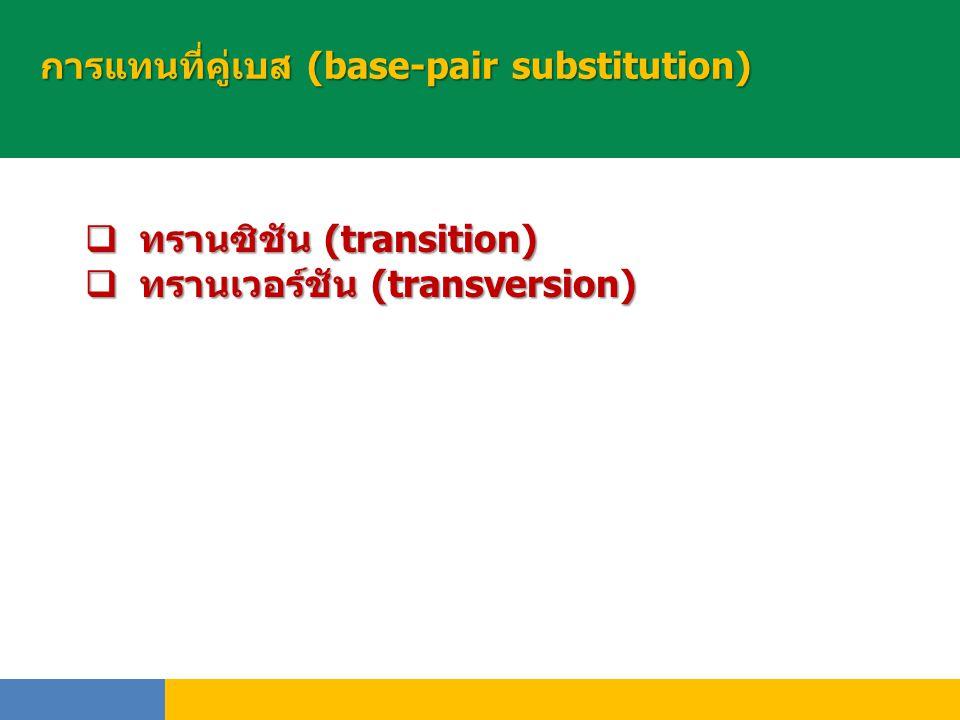 การแทนที่คู่เบส (base-pair substitution)