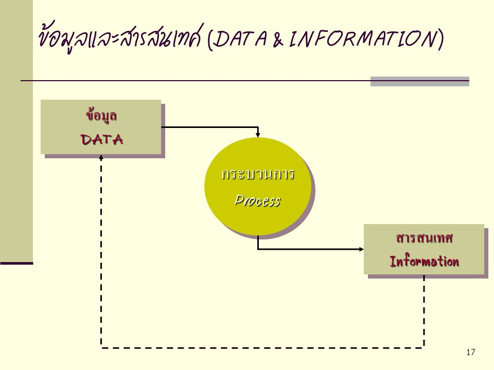 ข้อมูลและสารสนเทศ (DATA & INFORMATION)