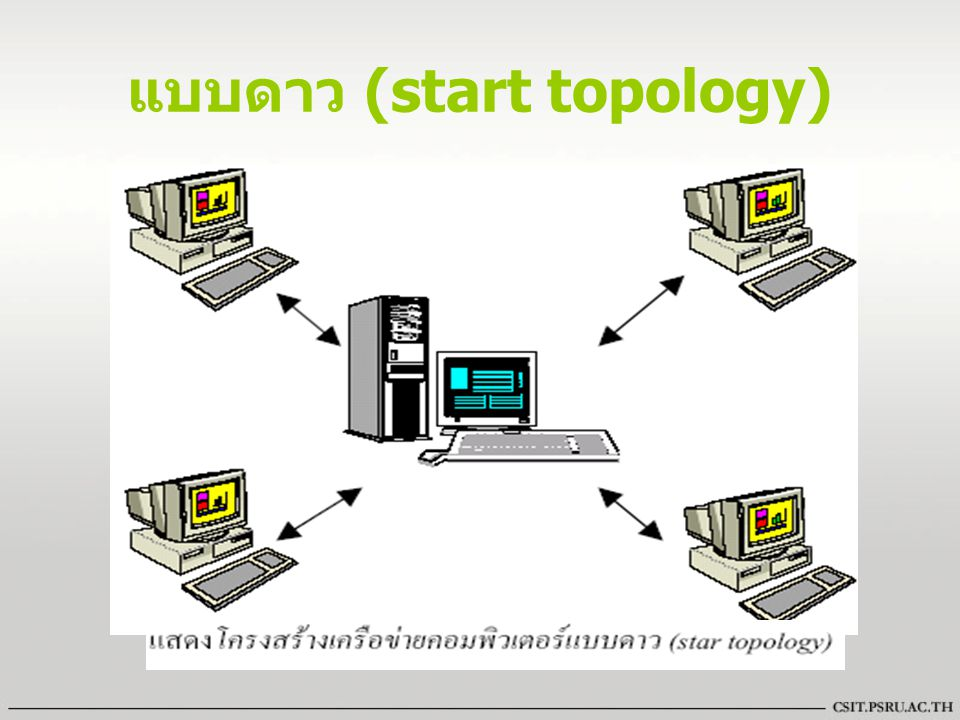 แบบดาว (start topology)