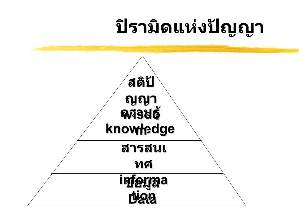 ปิรามิดแห่งปัญญา สติปัญญา wisdom ความรู้ knowledge
