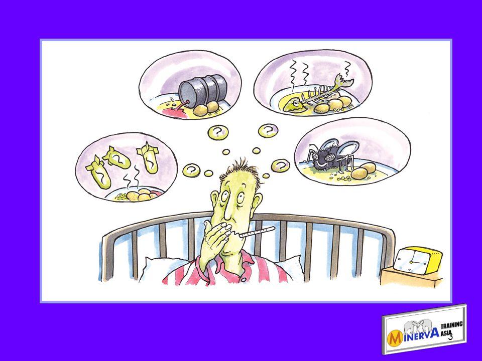 Types of bacteria ประเภทของเชื้อแบคทีเรีย