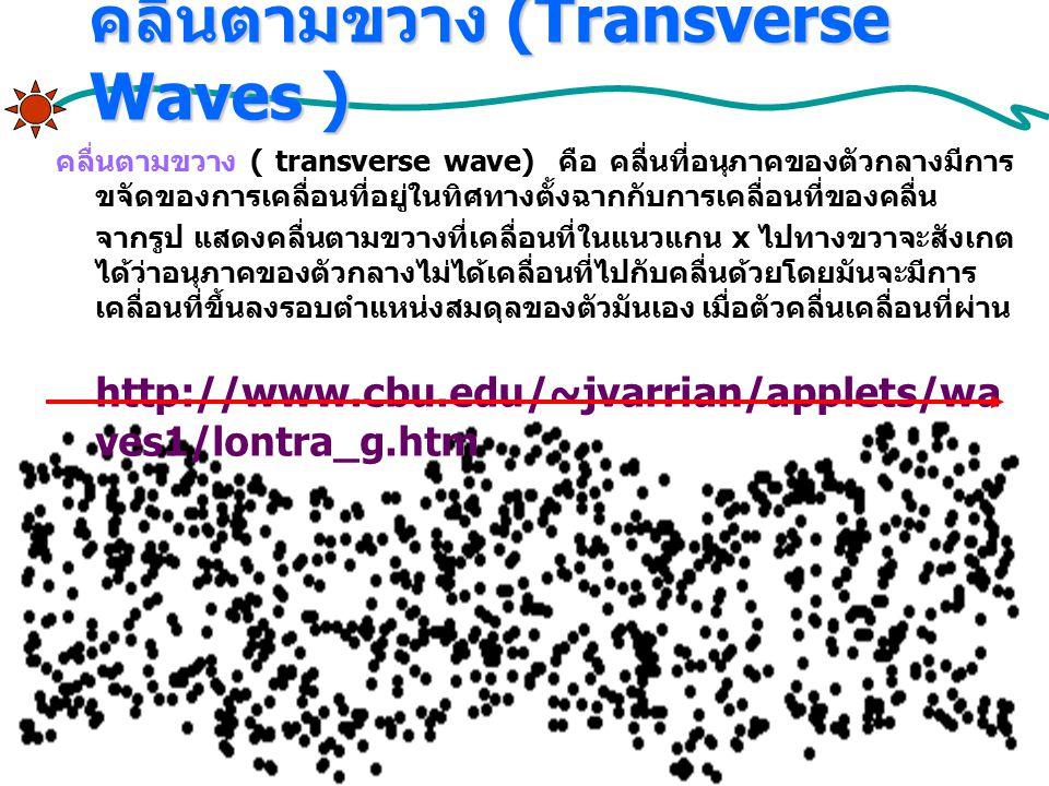 คลื่นตามขวาง (Transverse Waves )