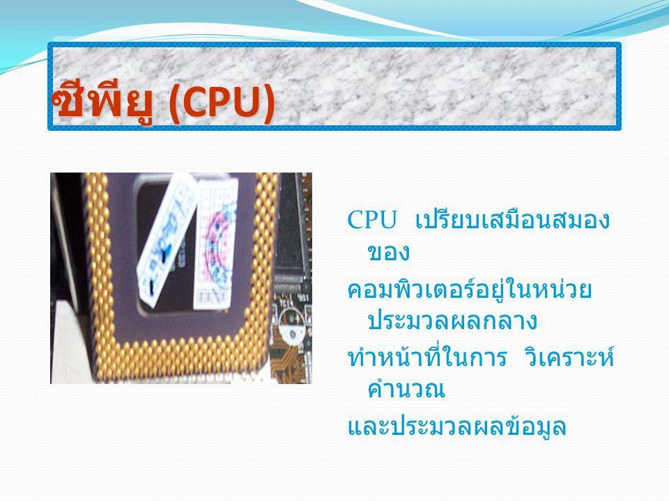 ซีพียู (CPU) CPU เปรียบเสมือนสมองของ