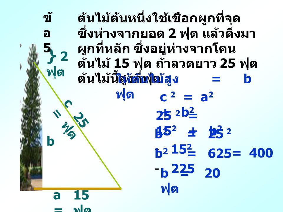ข้อ 5 ต้นไม้ต้นหนึ่งใช้เชือกผูกที่จุด ซึ่งห่างจากยอด 2 ฟุต แล้วดึงมาผูกที่หลัก ซึ่งอยู่ห่างจากโคนต้นไม้ 15 ฟุต ถ้าลวดยาว 25 ฟุตต้นไม้นี้สูงกี่ฟุต.