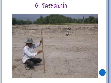 6. วัดระดับน้ำ