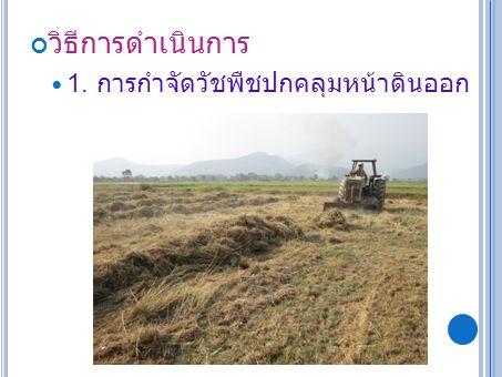 1. การกำจัดวัชพืชปกคลุมหน้าดินออก