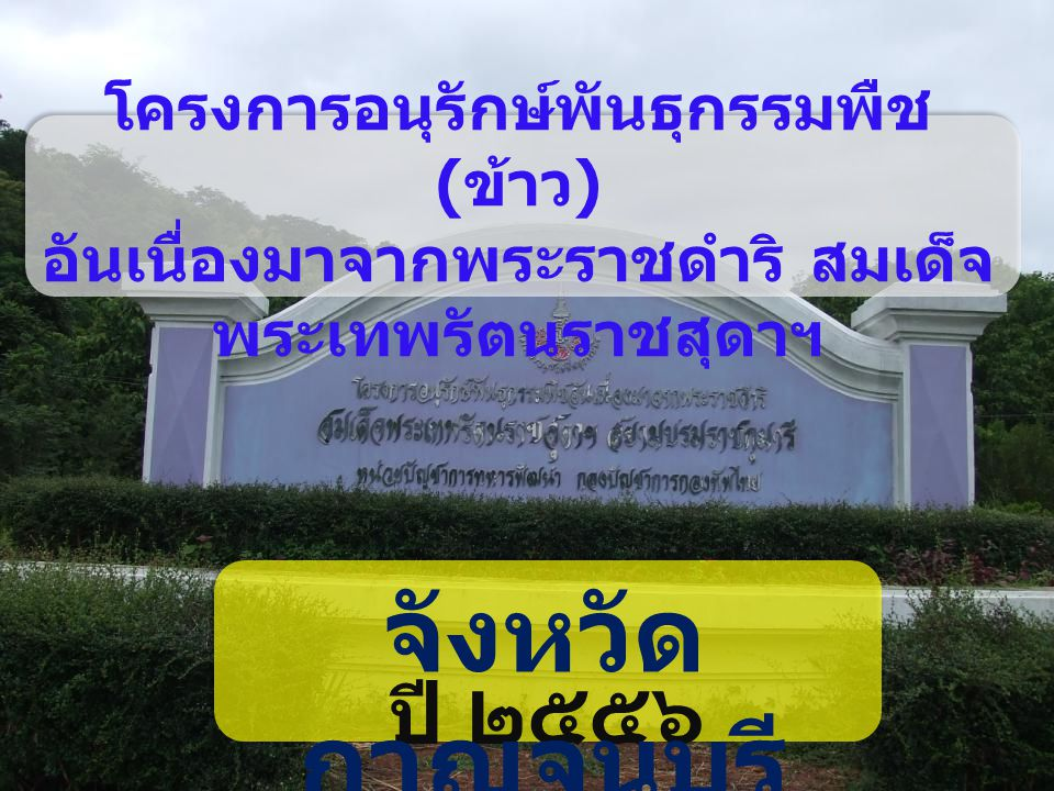 โครงการอนุรักษ์พันธุกรรมพืช (ข้าว) อันเนื่องมาจากพระราชดำริ สมเด็จพระเทพรัตนราชสุดาฯ