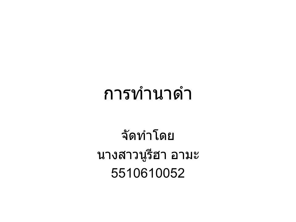 จัดทำโดย นางสาวนูรีฮา อามะ 5510610052