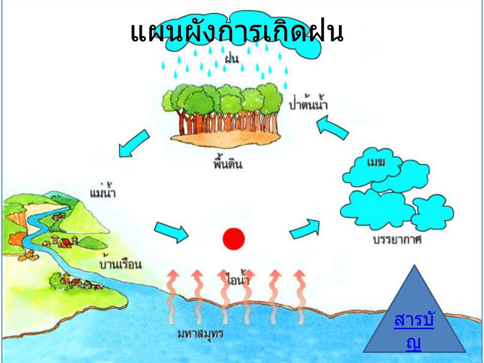 แผนผังการเกิดฝน สารบัญ