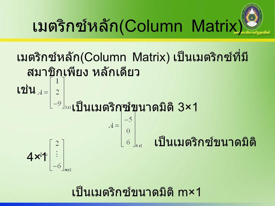 เมตริกซ์หลัก(Column Matrix)