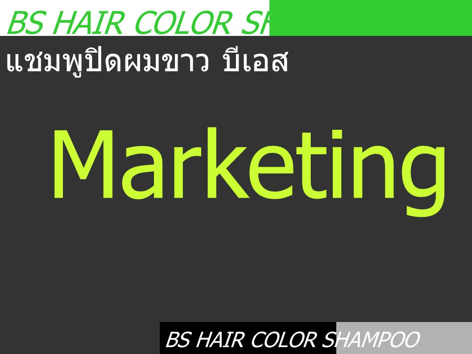 Marketing Plan BS HAIR COLOR SHAMPOO แชมพูปิดผมขาว บีเอส
