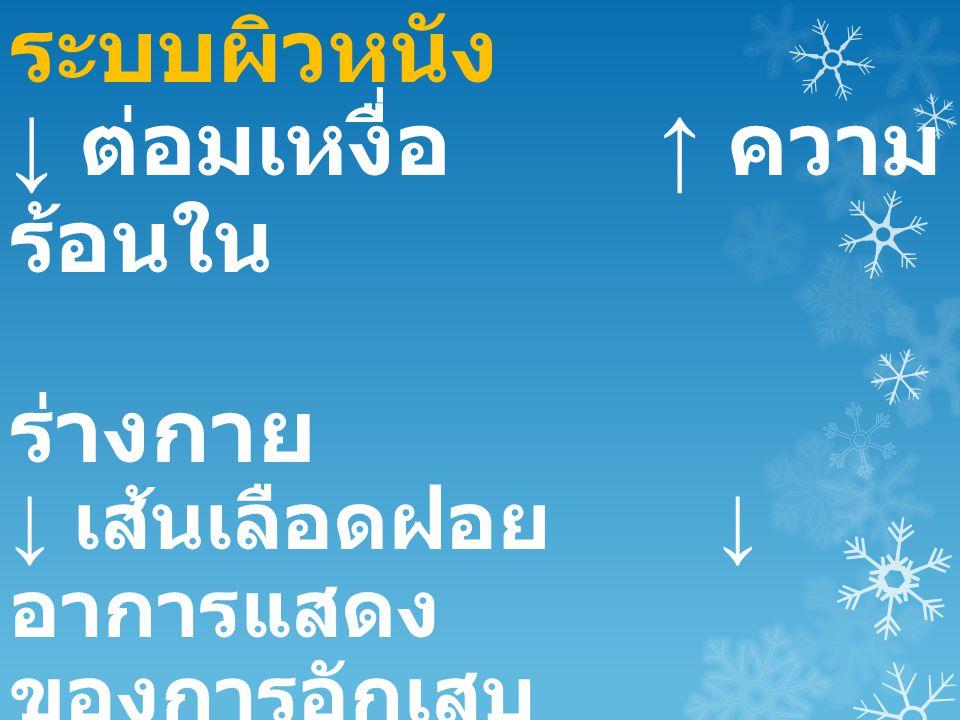 ↓ ต่อมเหงื่อ ↑ ความร้อนใน ร่างกาย