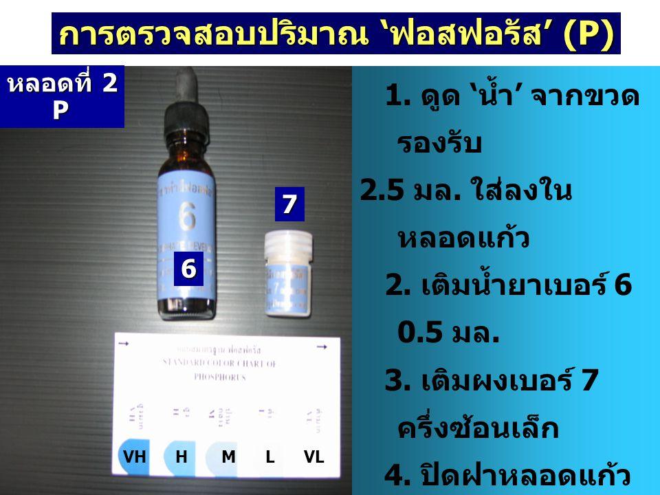 การตรวจสอบปริมาณ 'ฟอสฟอรัส' (P)