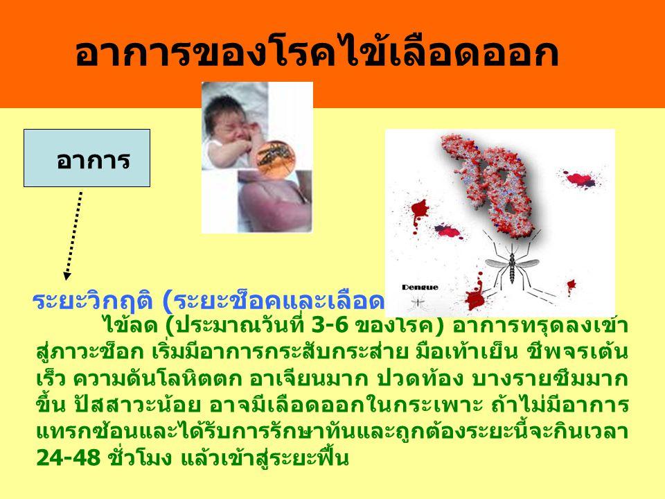 อาการของโรคไข้เลือดออก