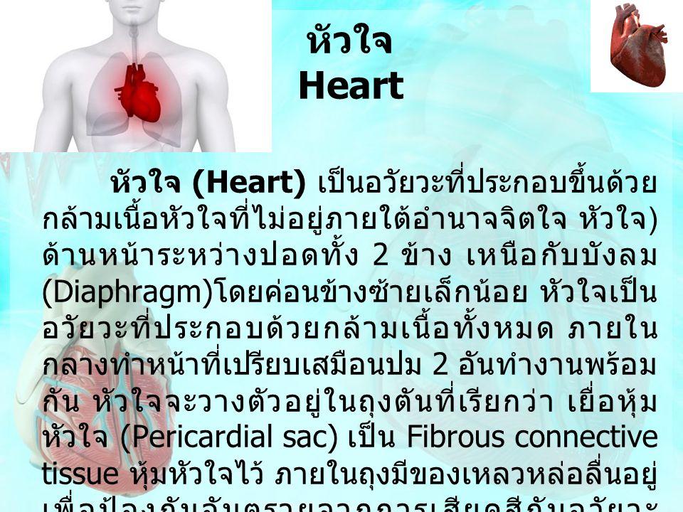 หัวใจ Heart