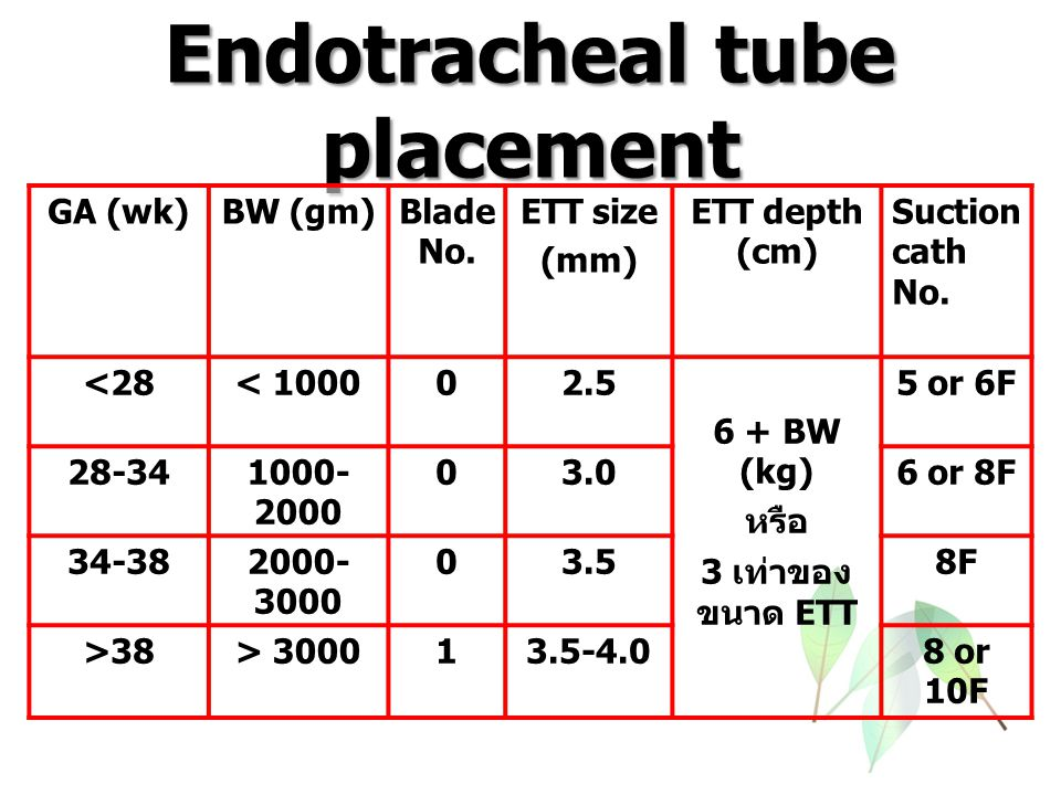 Endotracheal tube placement