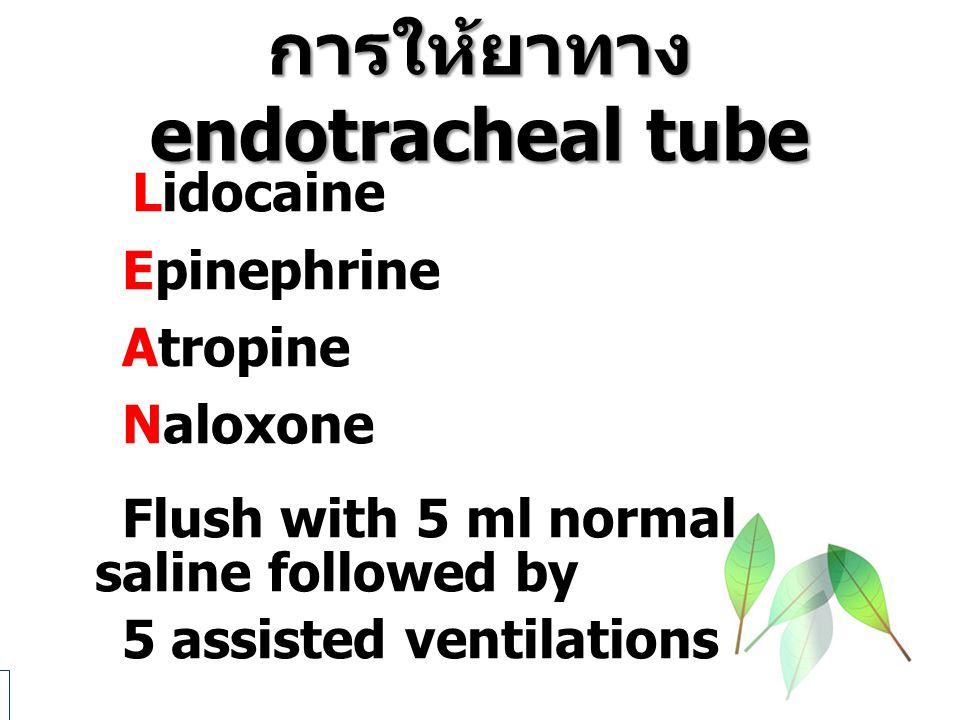 การให้ยาทาง endotracheal tube