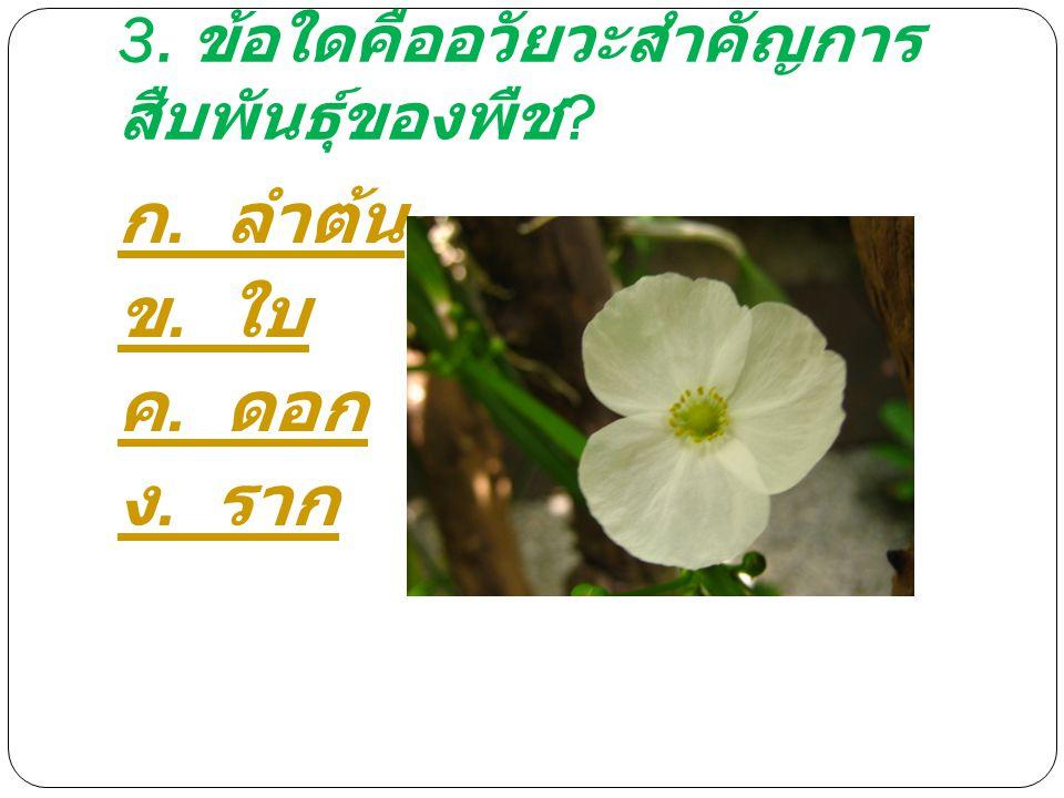 3. ข้อใดคืออวัยวะสำคัญการสืบพันธุ์ของพืช