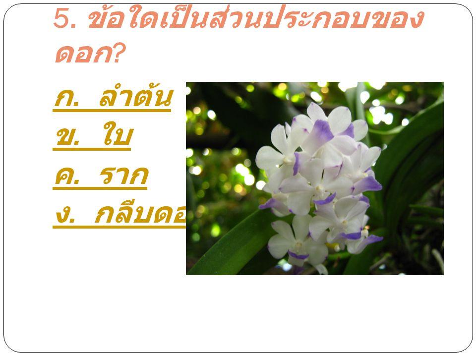 5. ข้อใดเป็นส่วนประกอบของดอก