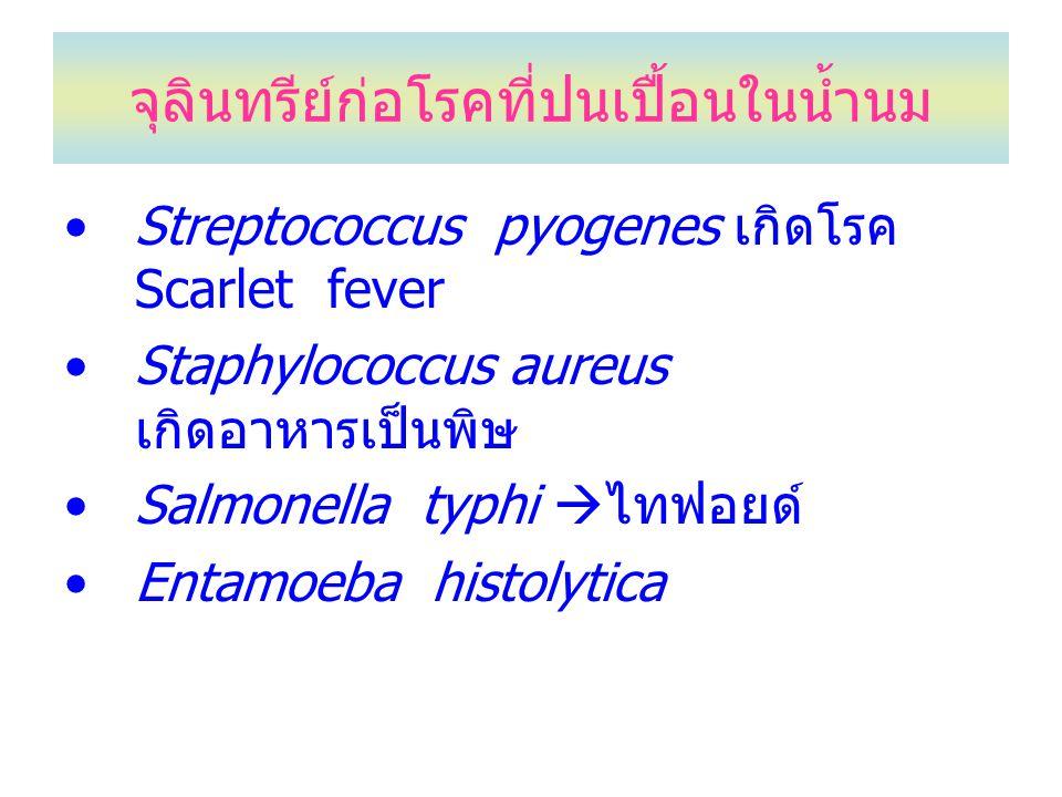 จุลินทรีย์ก่อโรคที่ปนเปื้อนในน้ำนม