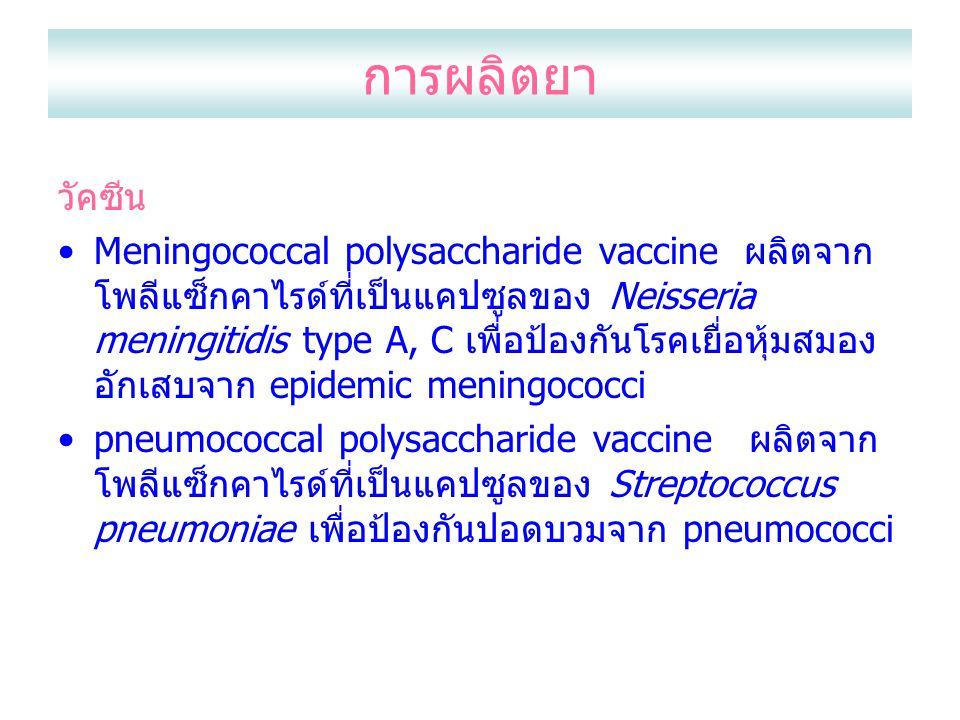 การผลิตยา วัคซีน.