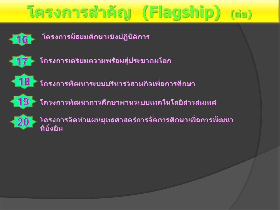 โครงการสำคัญ (Flagship) (ต่อ)
