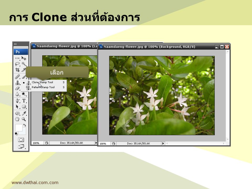 การ Clone ส่วนที่ต้องการ