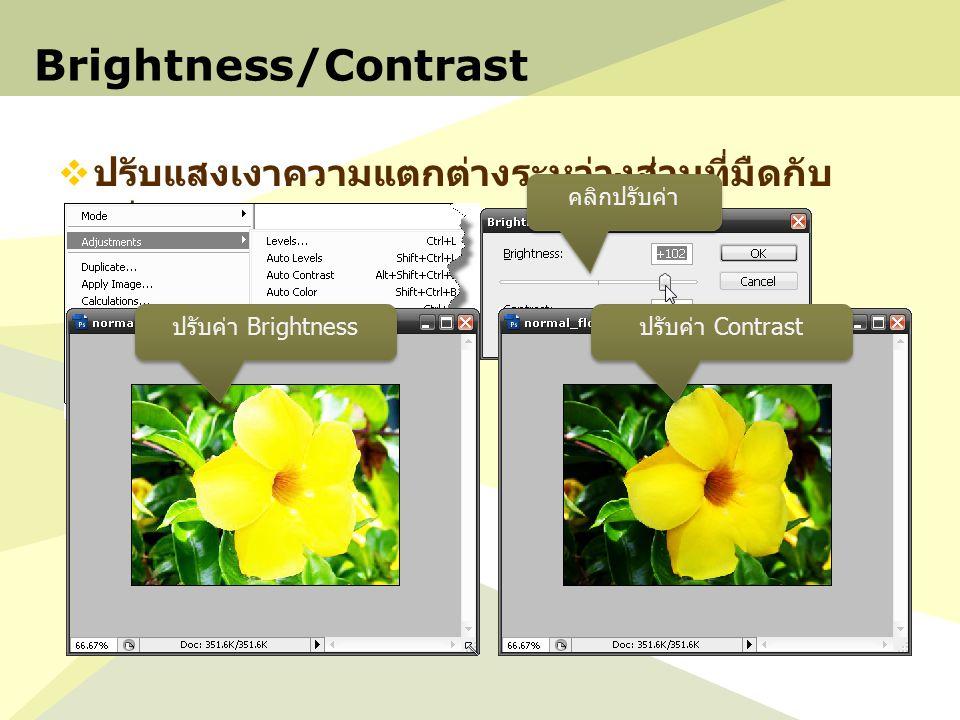 Brightness/Contrast ปรับแสงเงาความแตกต่างระหว่างส่วนที่มืดกับสว่าง