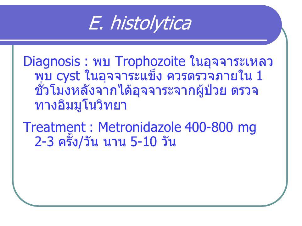 E. histolytica Diagnosis : พบ Trophozoite ในอุจจาระเหลว พบ cyst ในอุจจาระแข็ง ควรตรวจภายใน 1 ชั่วโมงหลังจากได้อุจจาระจากผู้ป่วย ตรวจทางอิมมูโนวิทยา.