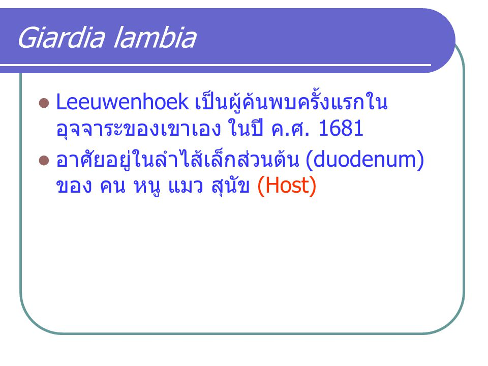 Giardia lambia Leeuwenhoek เป็นผู้ค้นพบครั้งแรกในอุจจาระของเขาเอง ในปี ค.ศ.