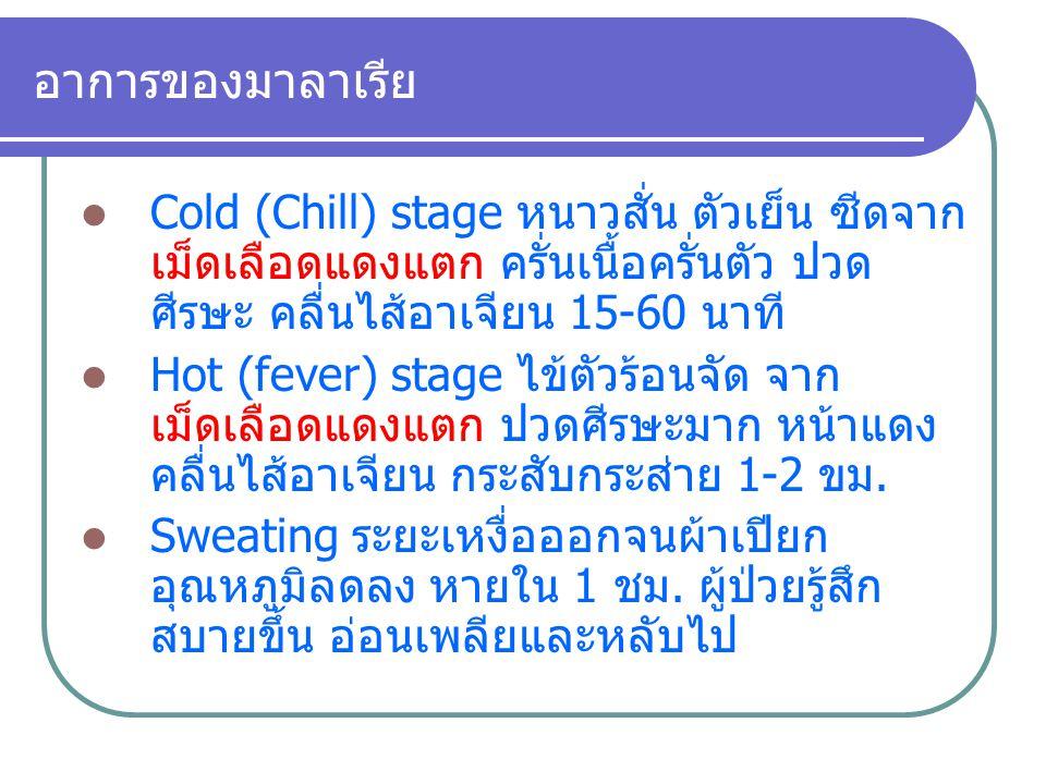 อาการของมาลาเรีย Cold (Chill) stage หนาวสั่น ตัวเย็น ซีดจากเม็ดเลือดแดงแตก ครั่นเนื้อครั่นตัว ปวดศีรษะ คลื่นไส้อาเจียน 15-60 นาที