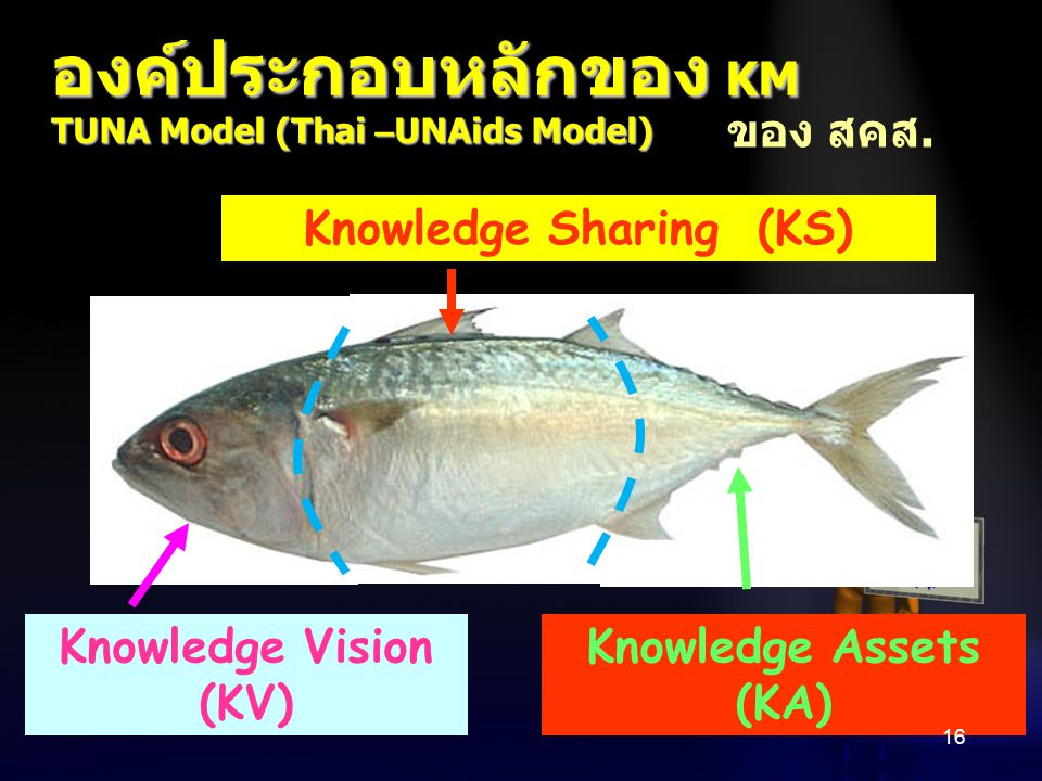 Knowledge Sharing (KS)