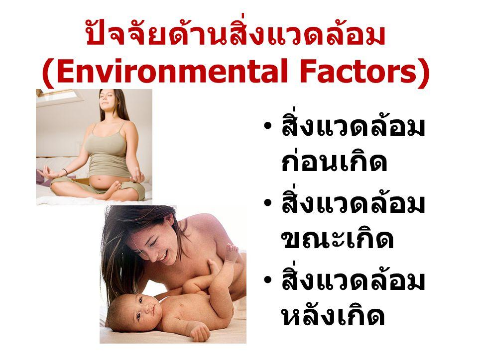 ปัจจัยด้านสิ่งแวดล้อม (Environmental Factors)